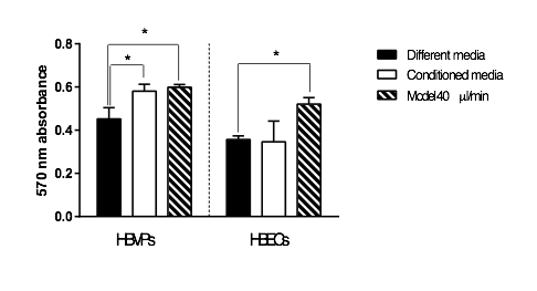 MTT ASSAY COMPARING HBVPs & HBECs UNDER DIFFERENT MEDIA CONDITIONS AND WITH FLOW